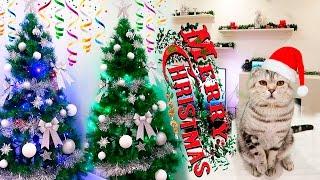 Украшаем дом к Новому году! Vlog 23.12.2016