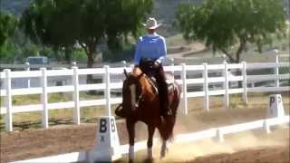 Western Dressage Level 1 Test 2 Kathleen Elliot Western Dressage Clinic June 22, 2014