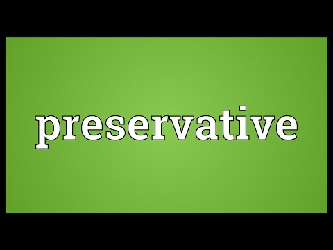 Preservative Meaning