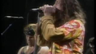 Pearl Jam- State of Love and Trust (Los Angeles
