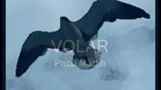 Paco Martin   Volar