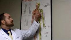 hqdefault - Acupuncture St Louis Back Pain