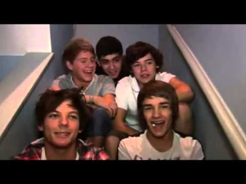 One Direction's Cute And Funny Laughs - *MUST WATCH*