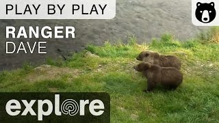 Ranger Dave - Katmai National Park - Brown Bear Play By Play