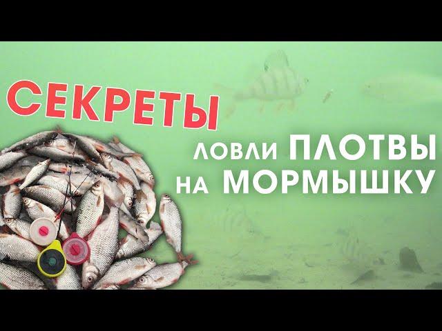 СЕКРЕТЫ ловли плотвы зимой на мормышку со льда