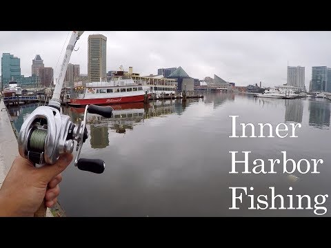 Hilarious DRUG ADDICT Stalks Me While I Fish!!! (Urban Bank Fishing At The Inner Harbor)