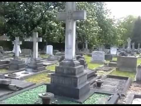 Michael Rennie's grave
