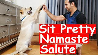 How to Train Sit Pretty/Namaste/Salute Trick to your Puppy Dog | Easy Dog Training at Home