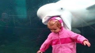 Funny Kids at the Aquarium Compilation #2 || Funny Baby and Pet