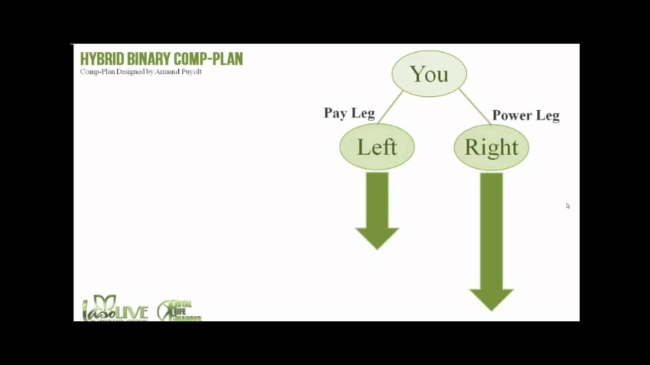 the-comp-plan-for-iaso-tea