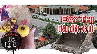 Cây thị tiêu diệt mọi xe ủi mon men lại gần ở Móng Cái, Quảng Ninh [Phần 1]