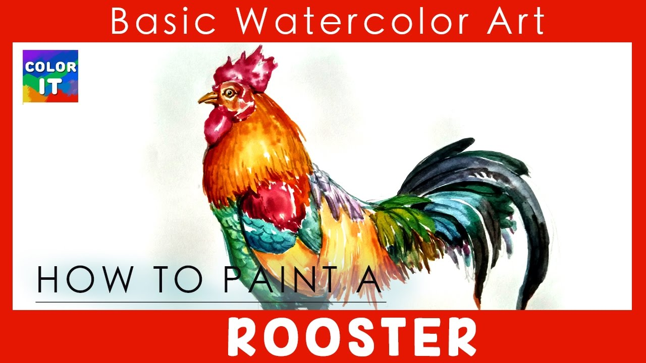 how to draw a colorful rooster step by step paint watercolor rooster colorful drawing easy