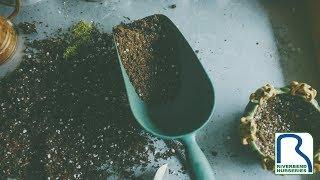 Fertilizing Tips in Late Winter