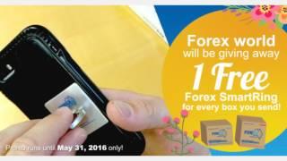 Forex World Australia | Happy Forex De Mayo 2016!
