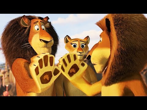 Dreamworks Madagascar Alex Reunites With His Family Madagascar Escape 2 Africa Kids Movies Youtube
