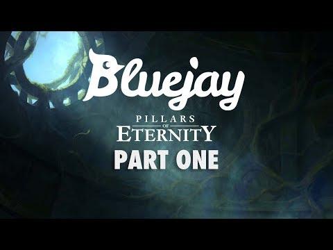 Bluejay Plays Pillars of Eternity [PT 1]