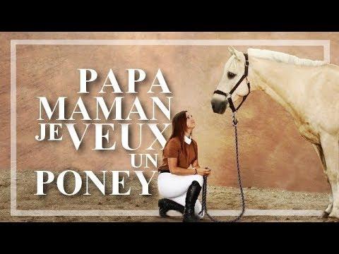 Convaincre Ses Parents D Avoir Un Poney Cheval Youtube