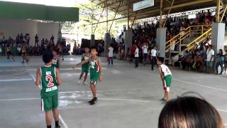 DCAA 2014 VB Elementary