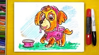 Как нарисовать СКАЙ щенка из мультика Щенячий Патруль / РыбаКит папа рисует
