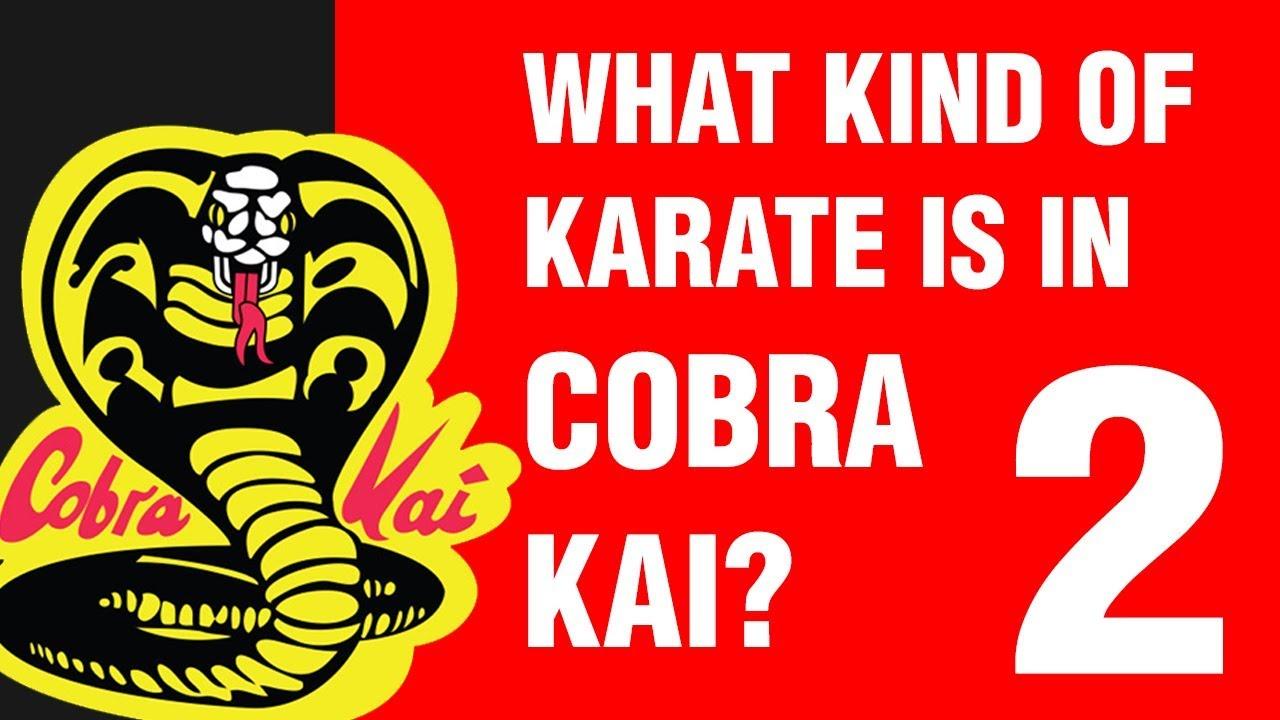 What Kind of Karate is in Cobra Kai? PART 2 | ART OF ONE DOJO