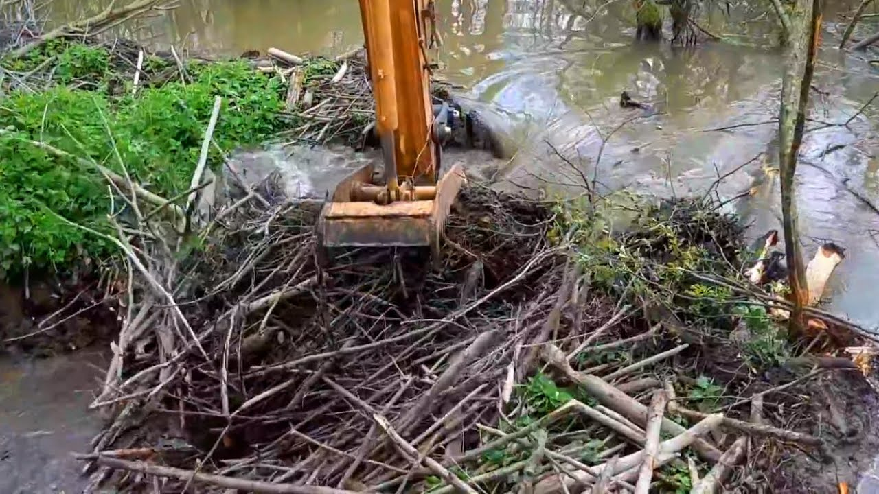 Beaver Dam Removal with Excavators | Awesome Floods & Dredging Compilation | Breaking a Beaver Dams