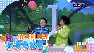 [智慧树]泡泡实验室:吹风机|CCTV少儿