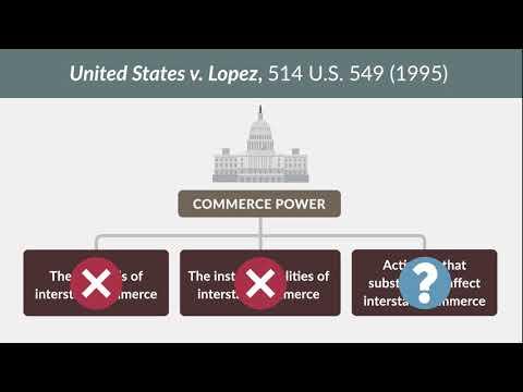 United States v. Morrison   quimbee.com