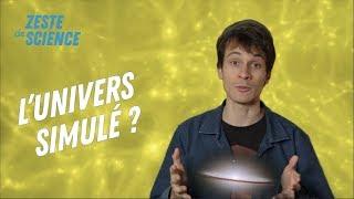 Peut-on simuler l'histoire du cosmos ? - Feat. Sebastien Carassou - ZdS#4