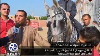 90دقيقة | انطلاق مهرجان الخيول العربية الاصيلة علي ارض الفروسية بالشرقية
