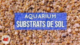 Substrat de sol pour aquarium que choisir?