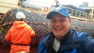 СКУМБРИЯ 14 Рыба Рыбалка Море Норвегия Моряки Рыбалка в море Морская рыбалка