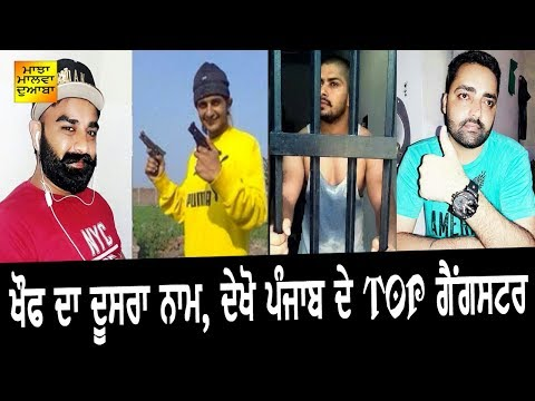 ਖ਼ੌਫ਼ ਦਾ ਦੂਸਰਾ ਨਾਮ, ਇਹ ਹਨ ਪੰਜਾਬ ਦੇ ਟੌਪ ਗੈਂਗਸਟਰ | top Gangstas Of Punjab | information Video |