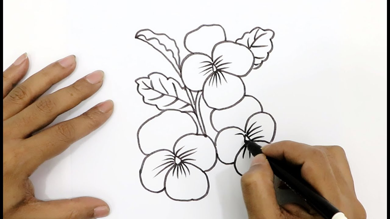 How to Draw a Beautiful Flower - Easy Step by Step Drawing ...