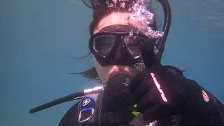 ダイビングスクールプライム http://www.primedive.jp/ 安全に潜れるダ...