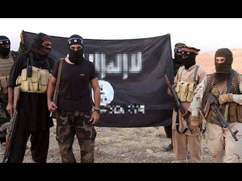 د. الهاشمي: #داعش يحاول التخلص من مقاتليه الأجانب بدفعهم للقيام بهجمات انتحارية  - نشر قبل 1 ساعة