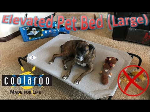 Coolaroo Elevated Pet Bed (Large)