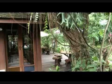 Drug & Alcohol Rehab—The Cabin Chiangmai, Thailand—on RodMcNeil.TV