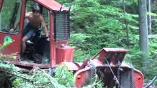 Tree Logging Bieszczady/Zrywka drewna Bieszczady