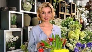 Цветочная диета Игровой анонс Утро России 14.03.2018