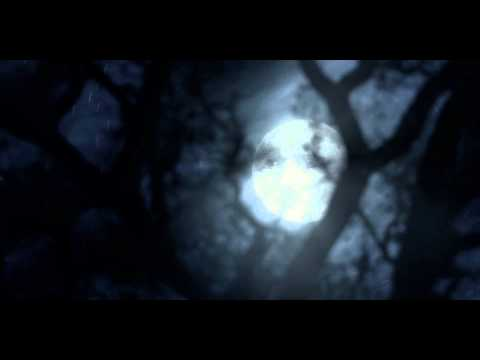 TWIXT trailer | Festival 2011