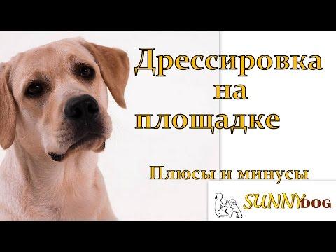 Жизнь и отдых в Черногории