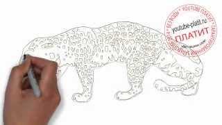 Как нарисовать поникшего леопарда идущего домой(Как нарисовать картинку поэтапно карандашом за короткий промежуток времени. Видео рассказывает о том,..., 2014-07-11T05:58:05.000Z)