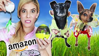 Dogs Try Weird Amazon Products (Funny Reactions)