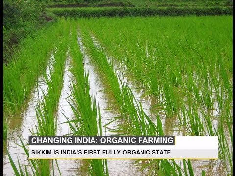 Changing India: The future of organic farming in India