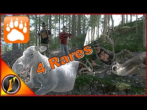 Crazy 4 Rare Hunt with Patrons  theHunter Classic 2018