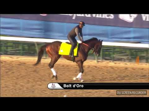 KENTUCKY DERBY UPDATE: JUSTIFY & BOLT D'ORO HIT THE TRACK + TIME TO NARROW DOWN OUR CONTENDERS