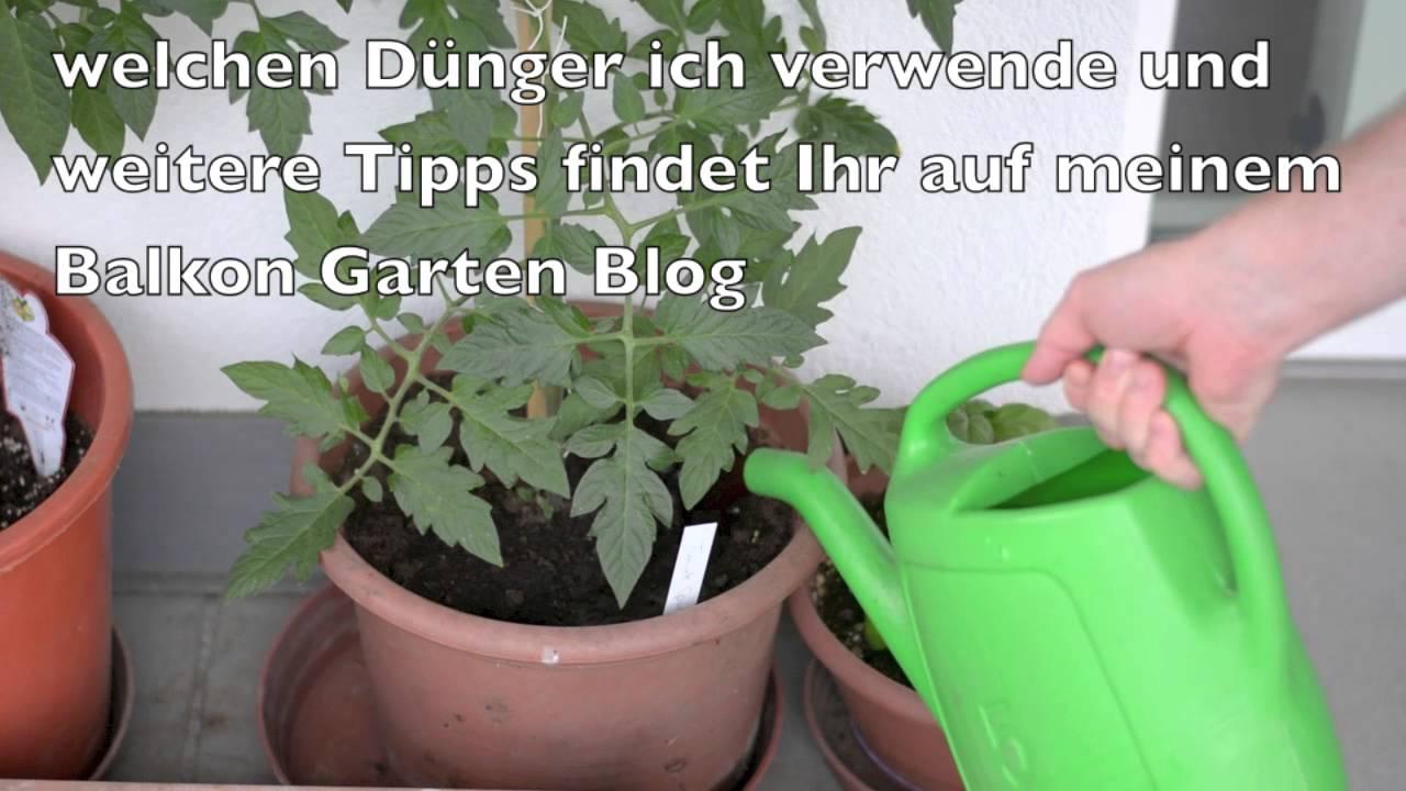 gemüse, kräuter und tomaten düngen balkon garten 2015 - youtube, Gartengerate ideen
