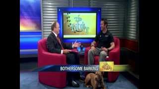 Tips To Address Problem Barking - News12 New Jersey The Pet Stop Oct 13, 2012