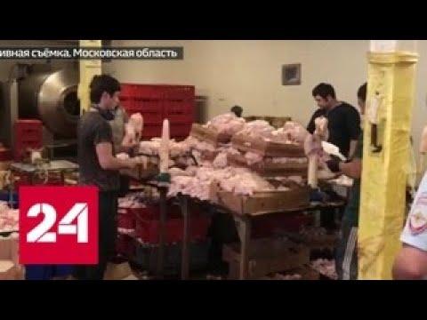 В Реутове ликвидирован цех, в котором нелегалы фасовали протухшее мясо - Россия 24