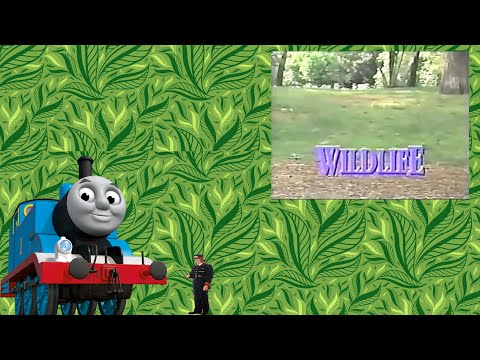 Wildlife (CGI version) | Custom DVD